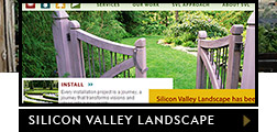 Featured website - Silicon Valley Landscape